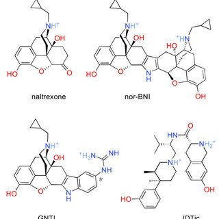 (PDF) Long-acting κ opioid antagonists nor-BNI, GNTI and