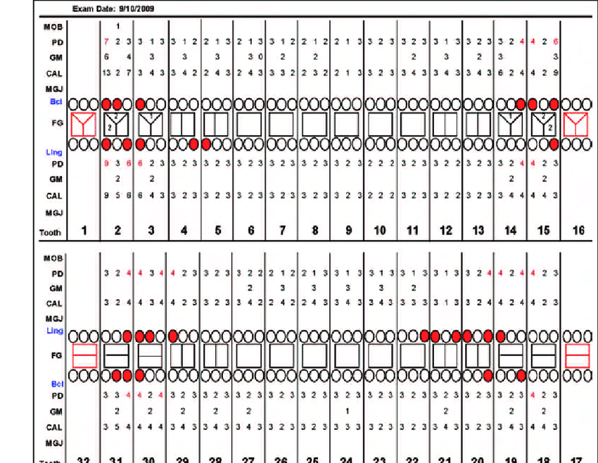 perio charting template auto electrical wiring diagram | 1998 Bmw 540i Radio Wiring Diagram |  |