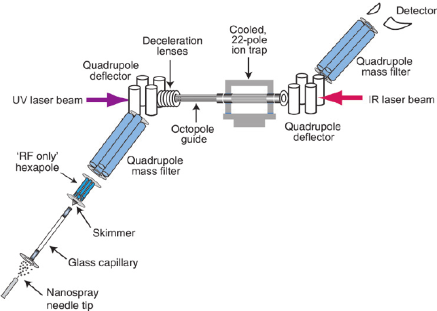 [Colour online] Schematic of tandem mass spectrometer with