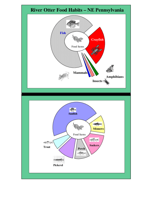 small resolution of examples of pie charts used to convey information regarding river otter food habits during slide shows