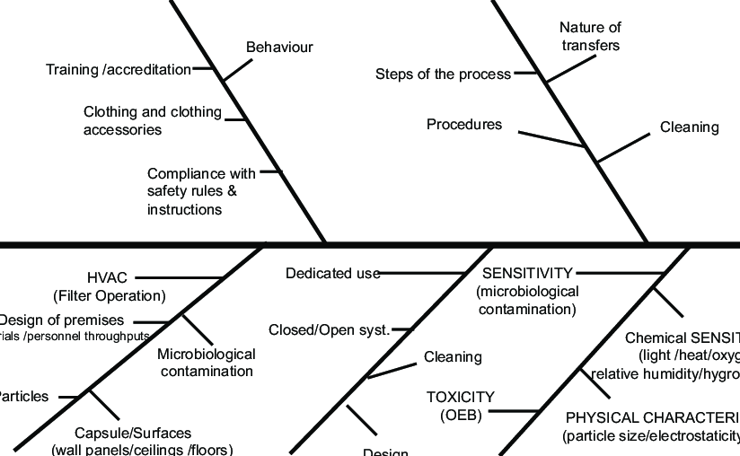 Ishikawa diagram (5 M): case of paste forms, API of medium