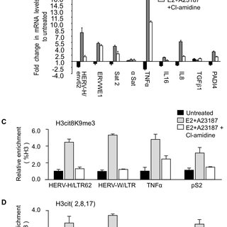 PADI activity facilitates activation of TNFα and IL8