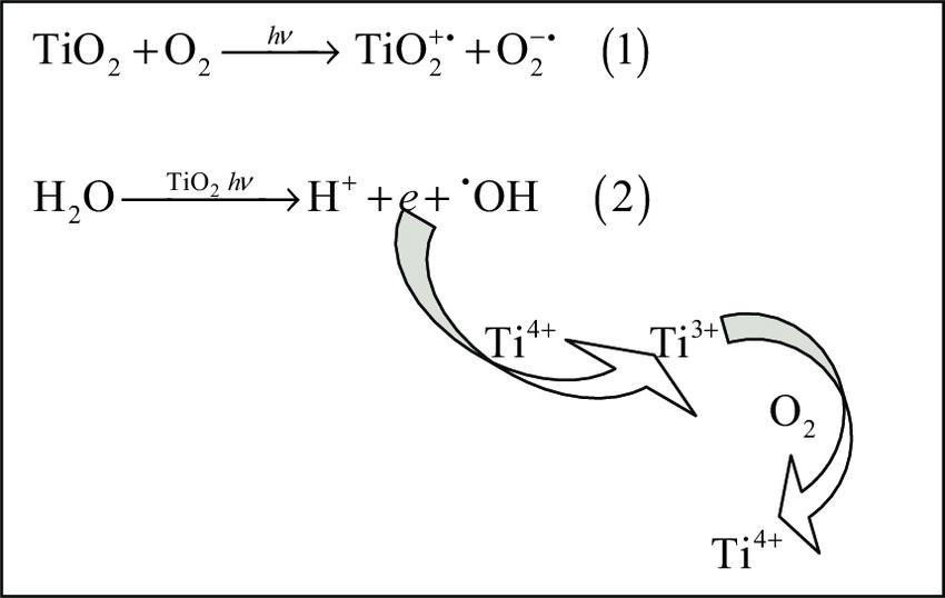 Superoxide anion radical (O 2 −• ), equation (1) and