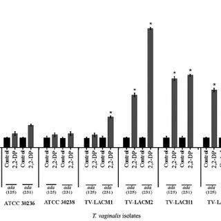 (PDF) Modulatory effect of iron chelators on adenosine