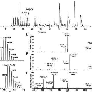 Deconvoluted CID spectra of OsCTLP-2C-terminal tryptic