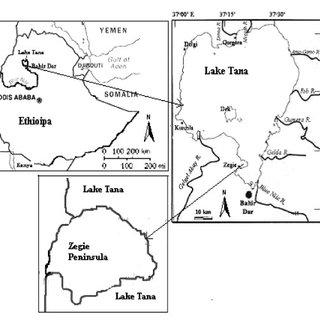(PDF) Ethnobotanical study of medicinal plants used by