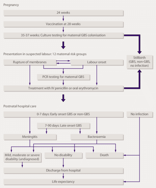 small resolution of flow diagram showing sequence of events included in the cost effectiveness model the 12