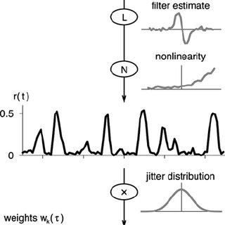 LNPJ cascade models. (A) Model with a single linear filter