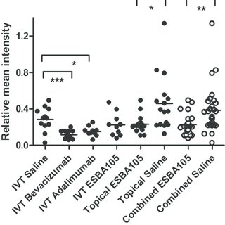 Prevention of grade 4 CNV lesion formation induced by