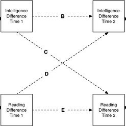 (PDF) Does Learning to Read Improve Intelligence? A