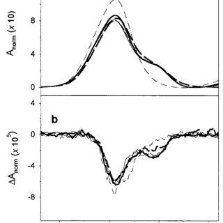 (PDF) Site-specific conformational determination in