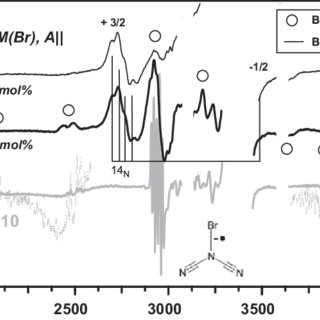 2 Radiation-induced decomposition of choline cations in