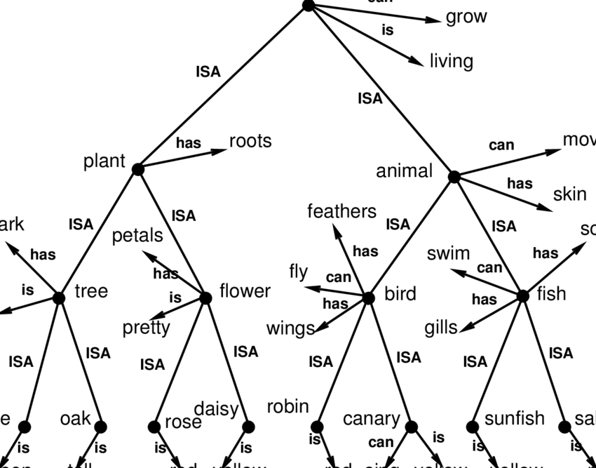 2: A taxonomic hierarchy of the type used by Collins and
