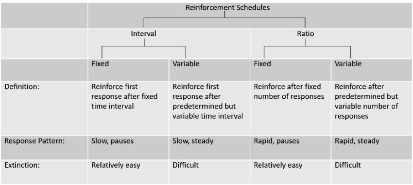 Matrix notes for a lesson on reinforcement schedules. | Download Scientific Diagram