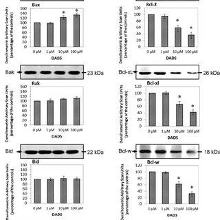 Comparison of clonogenic versus MTT assays for the