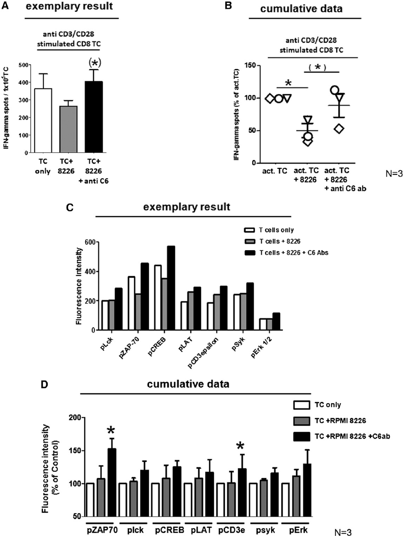Impact of CEACAM-6 on TCR signaling. (A) Polyclonally