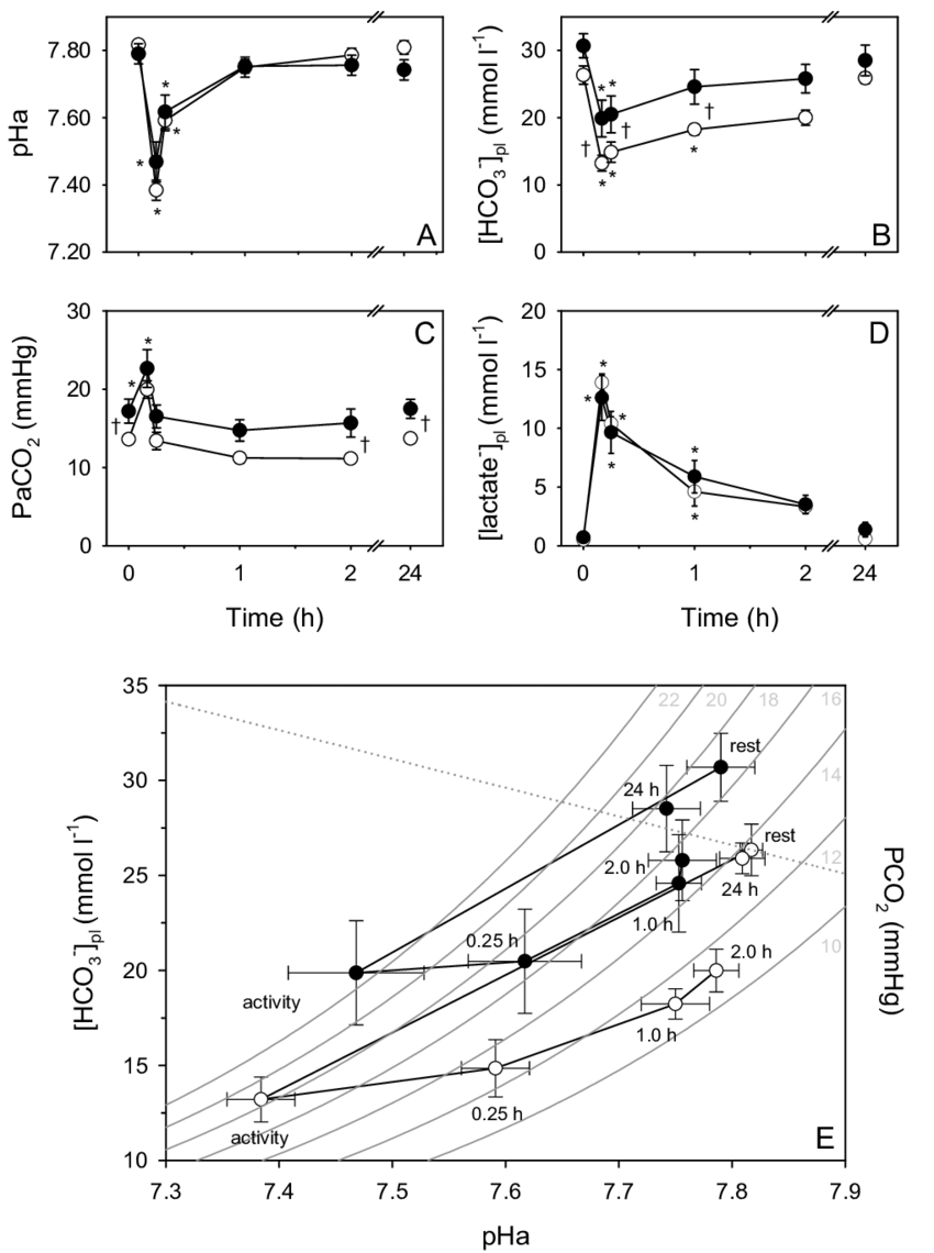 hight resolution of arterial acid base parameters following forced activity in fasting open circles and digesting