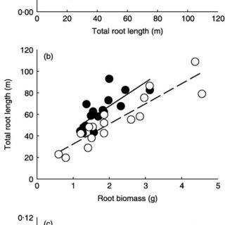 (PDF) Bimodal root diameter distributions in Serengeti