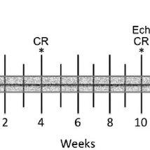 (PDF) Nonuniform Cardiac Denervation Observed by C-meta