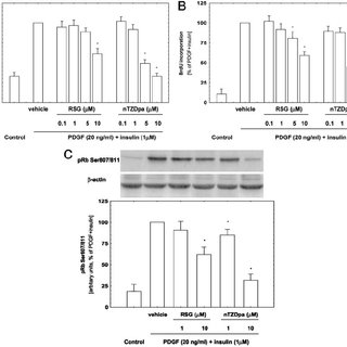 nhibition of Mitogen-Induced MCM7 Transcription Is PPAR