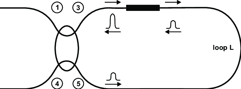 2 The nonlinear amplifying loop mirror configuration after
