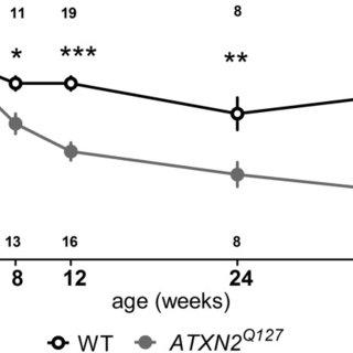 RT-PCR for Rbfox1-mediated alternative splice variants. RT