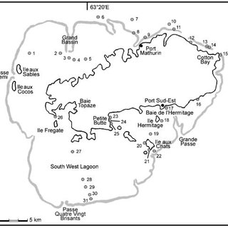 (PDF) The marine green and brown algae of Rodrigues