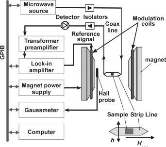 Schematic diagram of the stripline ferromagnetic resonance