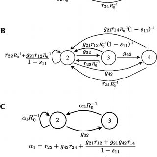 (PDF) A New Method for Calculating Net Reproductive Rate
