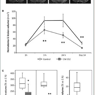 CM352 pharmacokinetics parameters estimated in rats after