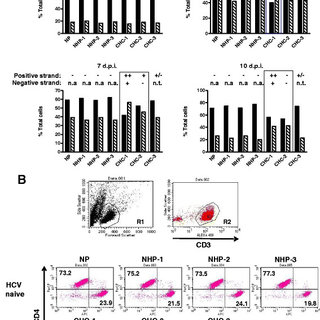 Yield and viability of PBMC isolated by the Ficoll and CPT