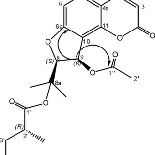 HPCCC chromatogram of the crude extract using HEMW (2:1:2