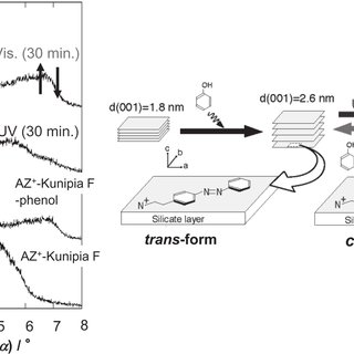 Schematic representation of the fabrication of