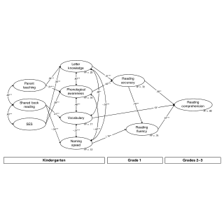(PDF) Examining an Extended Home Literacy Model: The