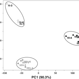 Fermentation performance of haploid and diploid yeast