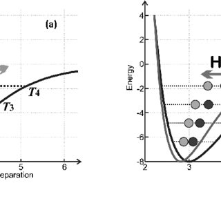 Electrical conductivity in the mantle transition zone. The