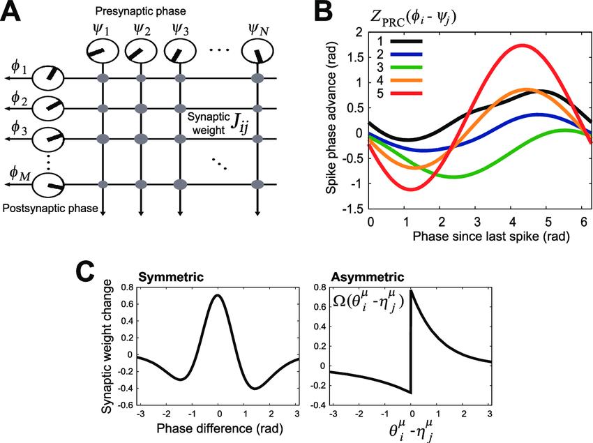 Structure of hetero-associative memory model. (A