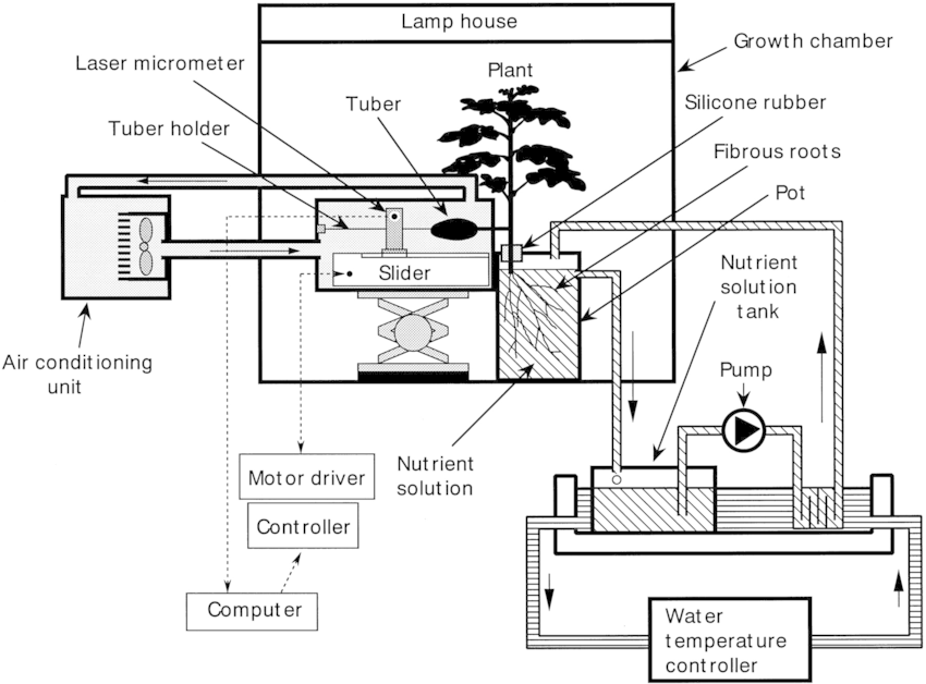 Schematic diagram of a hydroponic system for on‐line