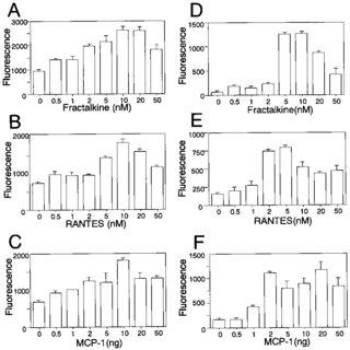 Binding characteristics of fractalkine-SEAP to THP-1 cells