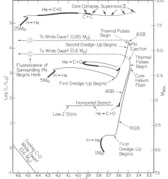 1 the hr diagram showing evolutionary tracks for stellar models of various initial masses 1 5 and 25 m luminosity is given in units of solar  [ 850 x 973 Pixel ]