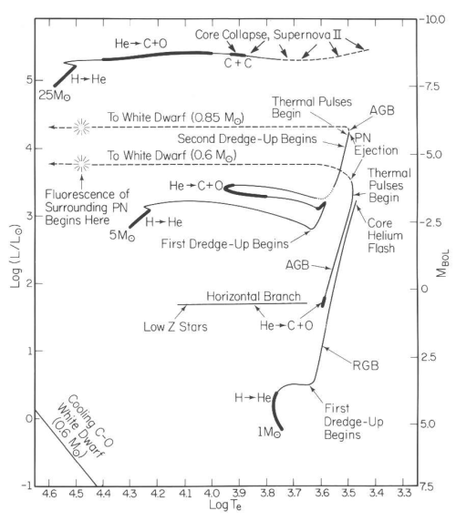 small resolution of 1 the hr diagram showing evolutionary tracks for stellar models of various initial masses 1 5 and 25 m luminosity is given in units of solar
