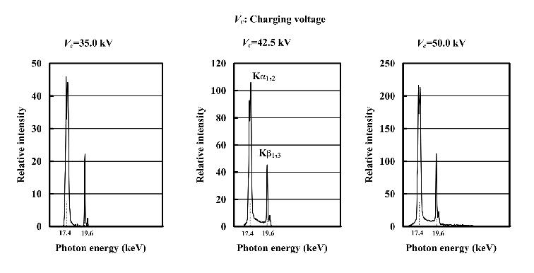 Block diagram of a linear plasma flash x-ray generator