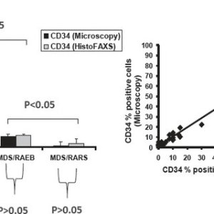 A Percentage of CD34 cells in the bone marrow of patients with acute   Download Scientific