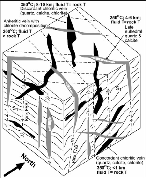 Cartoon block diagram summarising the orientations of four