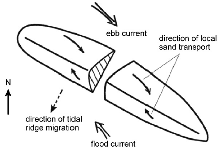 Block diagram of tidal current and sand movement over a