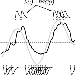 4: The three primary dopaminergic pathways in the brain