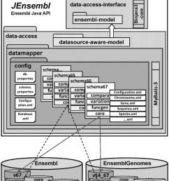 schematic diagram of the modular jensembl architecture where schema versioned mybatis [ 760 x 1173 Pixel ]