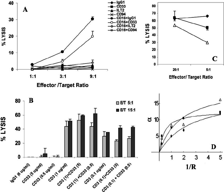 A study of CD33 (SIGLEC-3) antigen expression and function