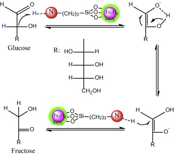 Proposed reaction mechanism for the isomerization of