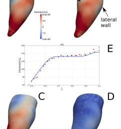 velocity magnitude distribution on the endocardium during diastole at download scientific diagram [ 850 x 1254 Pixel ]